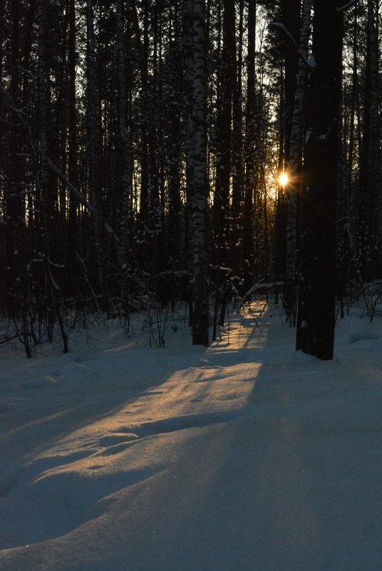 Тень - grovs