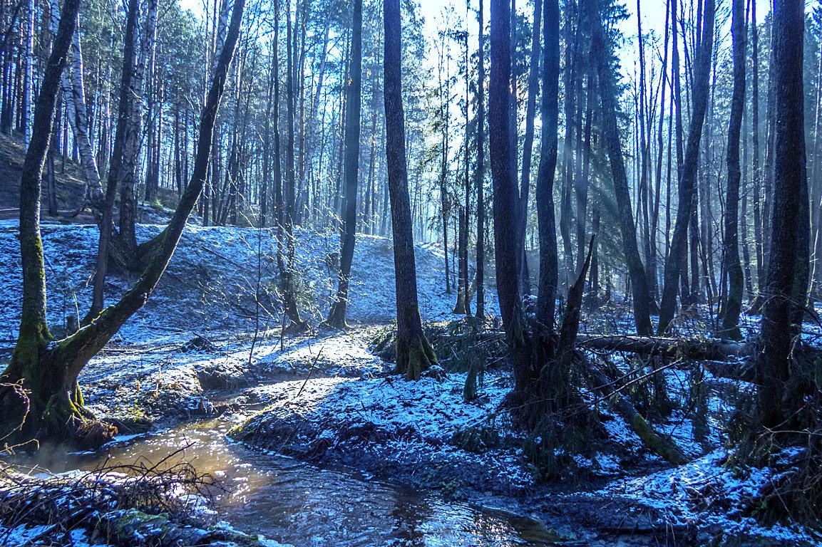 лесной ручей - Сергей Цветков