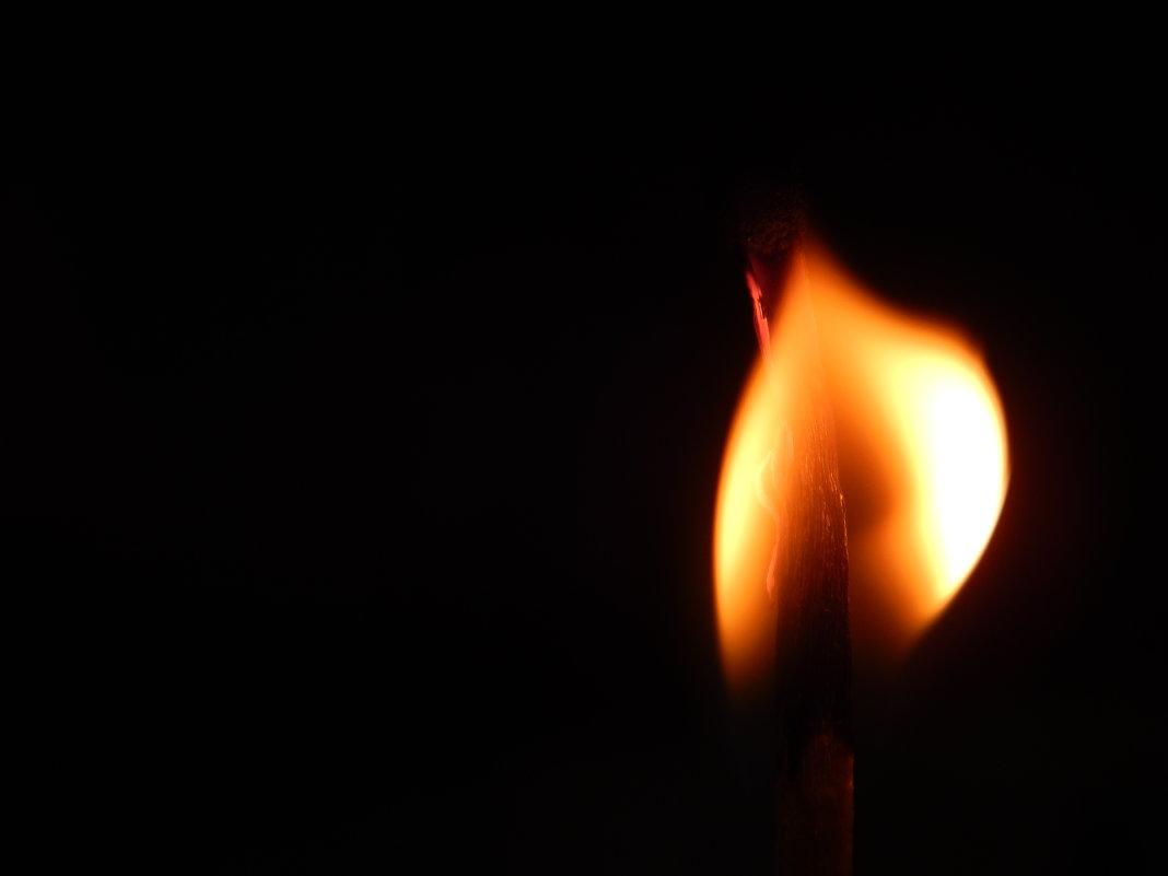 догорающая плоть - Дарья Дель
