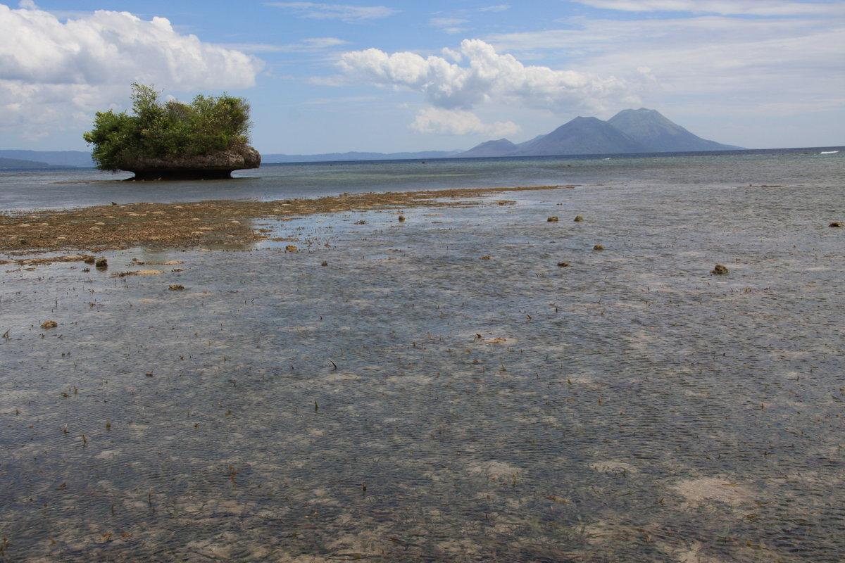 Островок в океане - Антонина