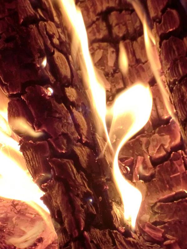 Лики огня... - Владимир Павлов