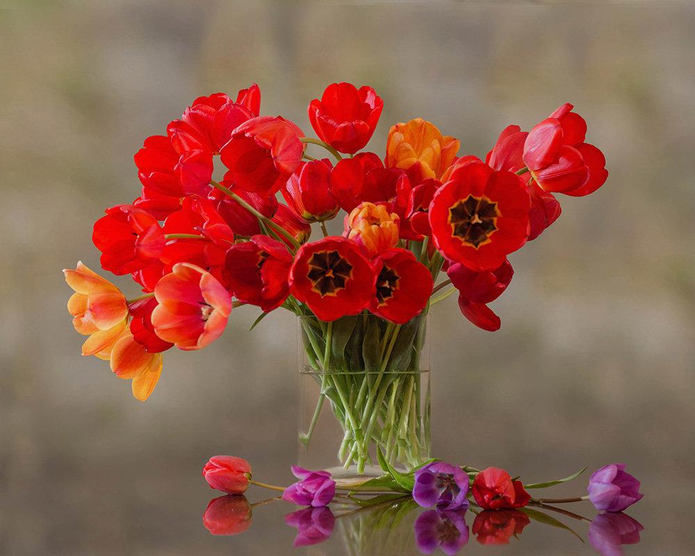 Тюльпаны - Елена Ахромеева