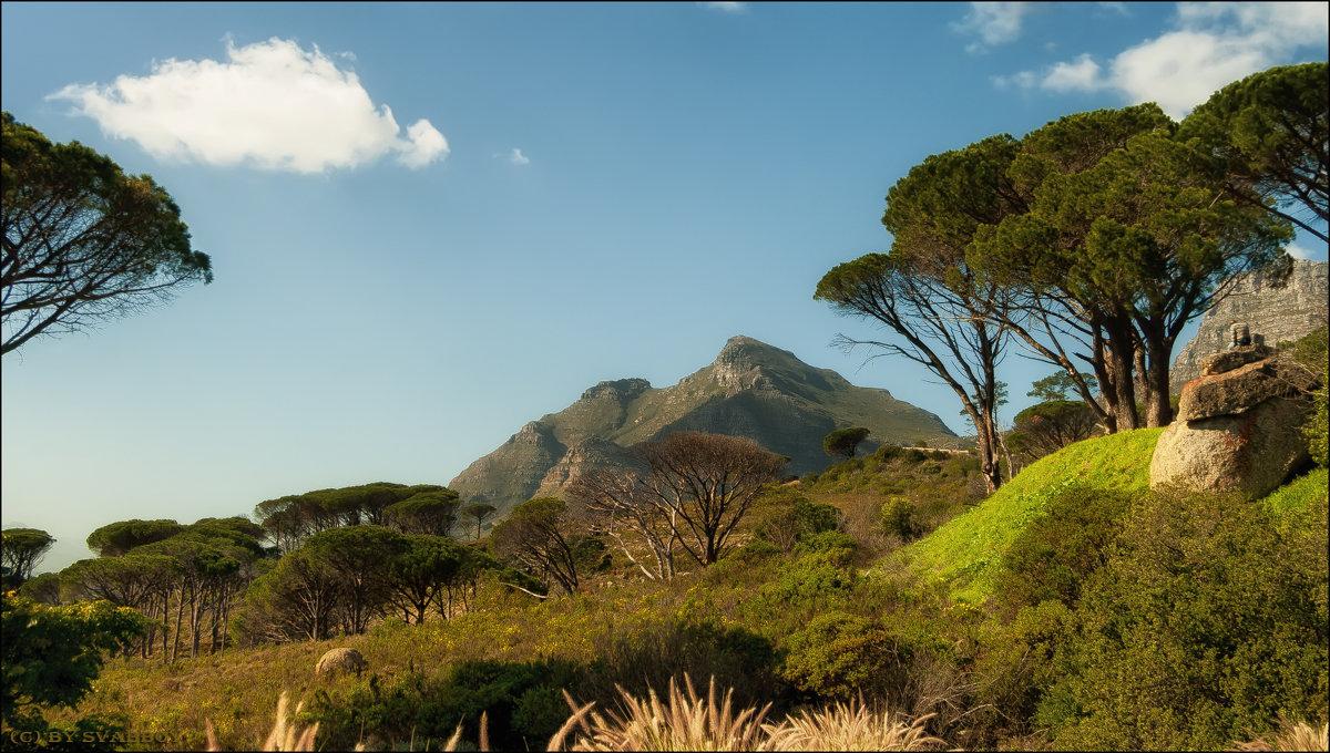 Кейптаун - svabboy photo