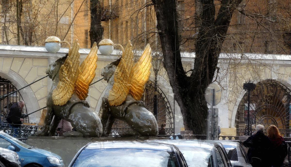 Весна на Екатерининском канале - sv.kaschuk