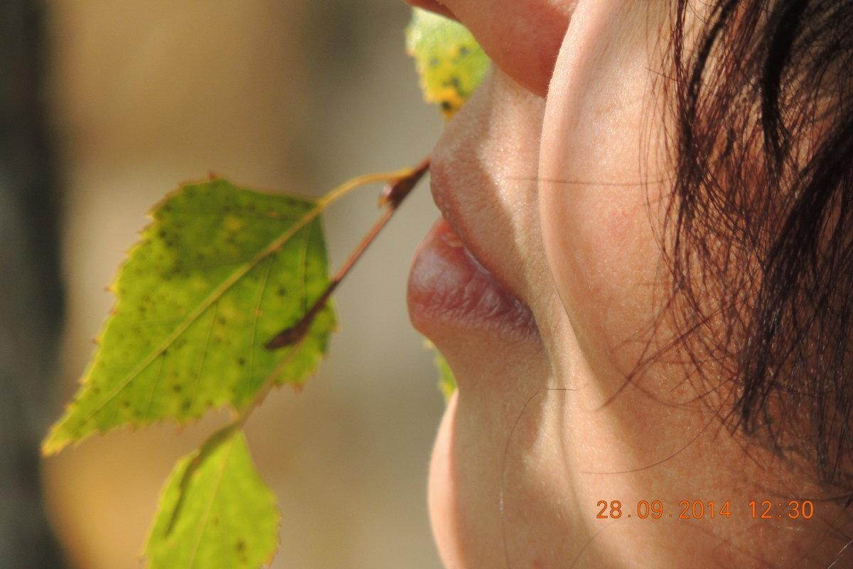 Осень - Лилия