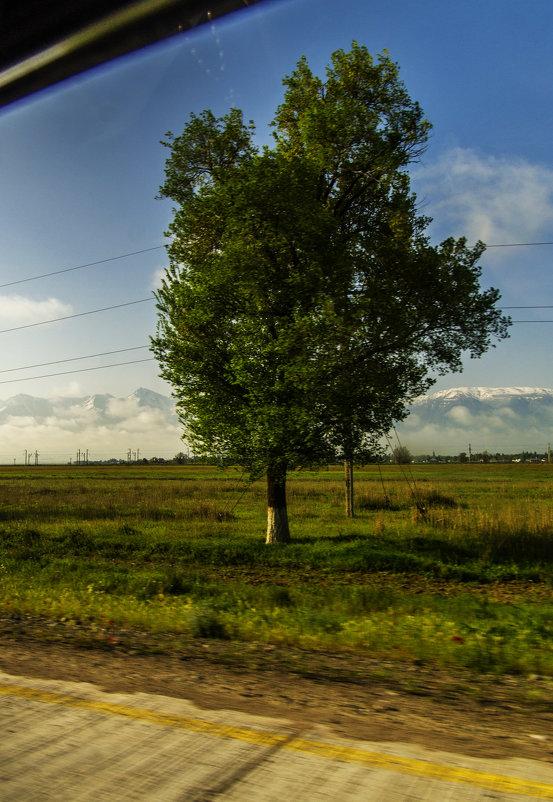 Из окна Авто - Дмитрий Потапкин
