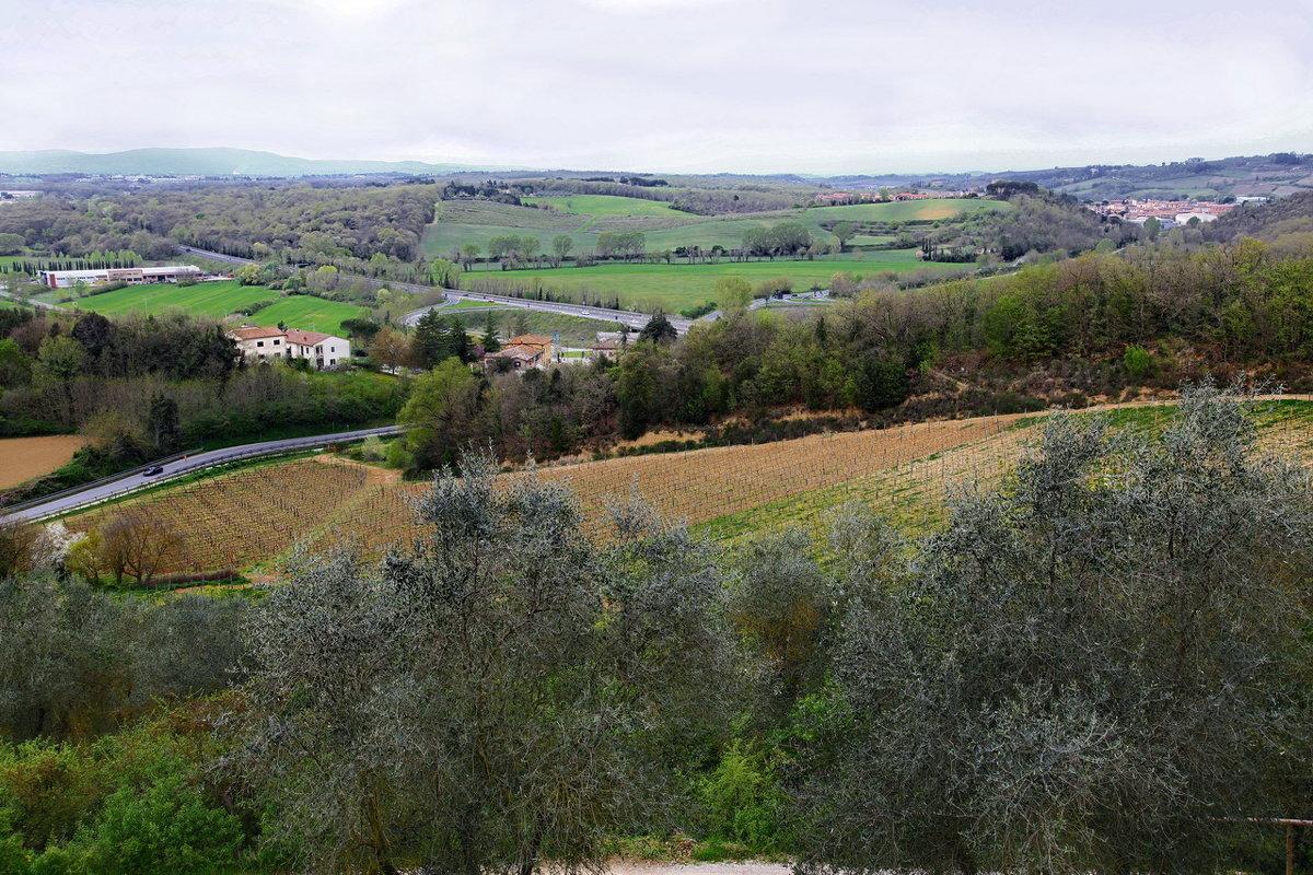 Весна в Тоскано... - Alex S.