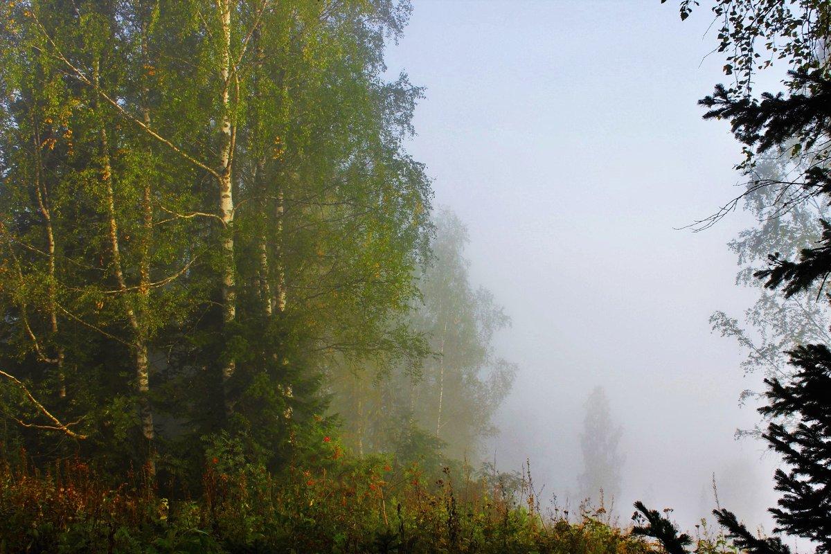 В распадке туман - Сергей Чиняев