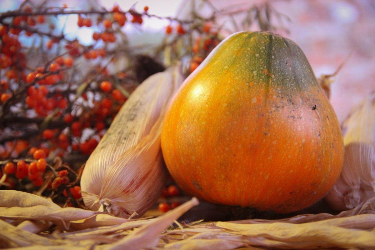 Овощные наброски - Валерия Монахова