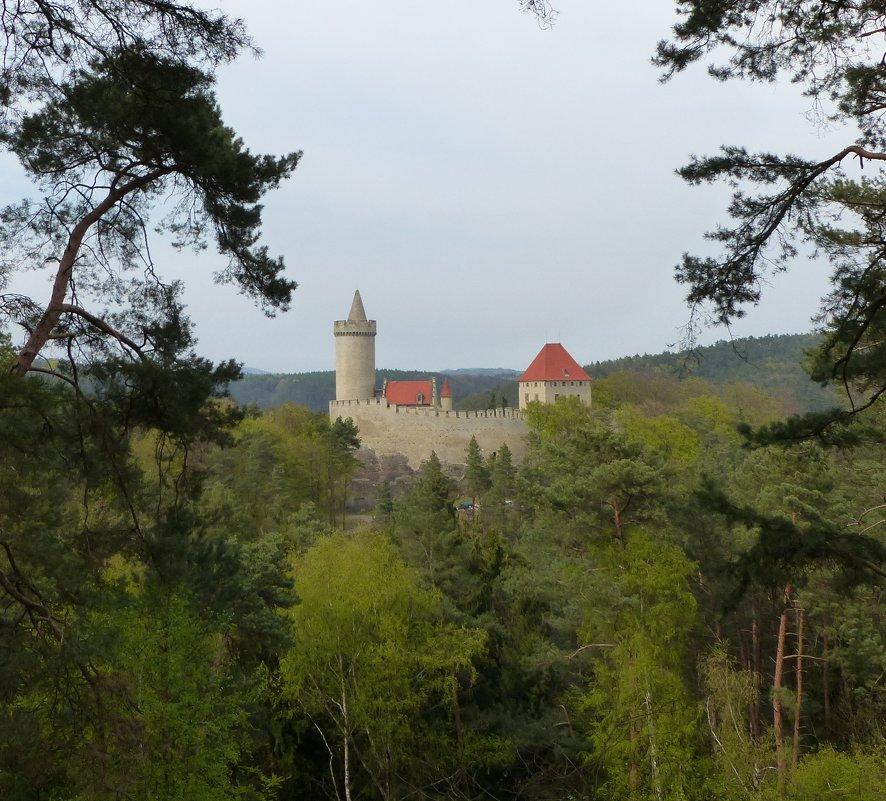 замок - Ольга Богачёва
