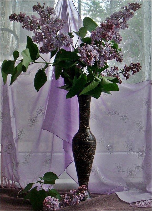 Подарок для всех - Нина Корешкова