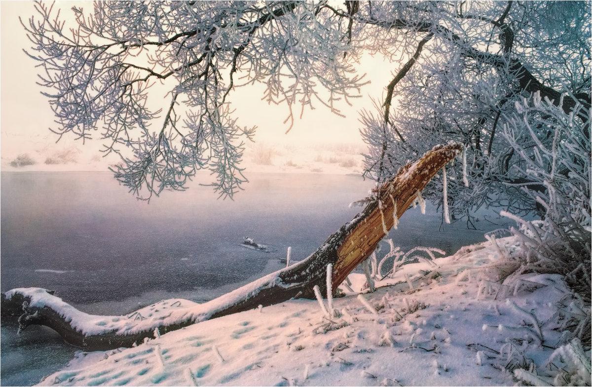 Зимний этюд - Сергей Шабуневич
