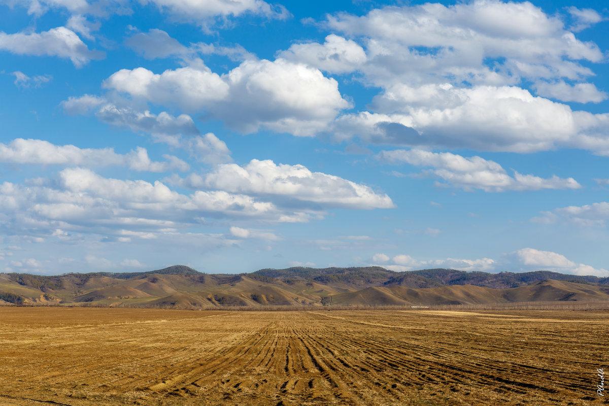 Просто поле - Андрей Пугачев