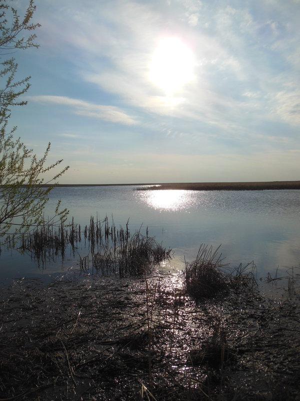 вечер у озера Жалтырколь - игорь