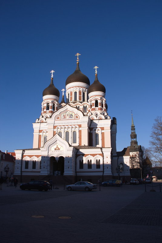 Таллин,май 2016 - Петр