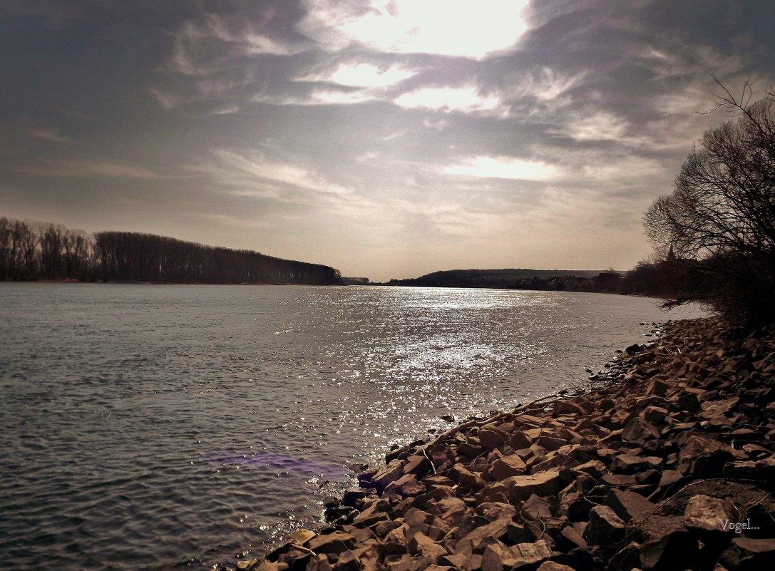 Утро на реке Рейн.. - Эдвард Фогель