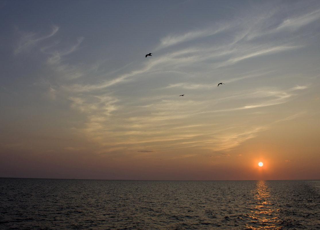 Закат над Ладогой. - Ольга Лиманская
