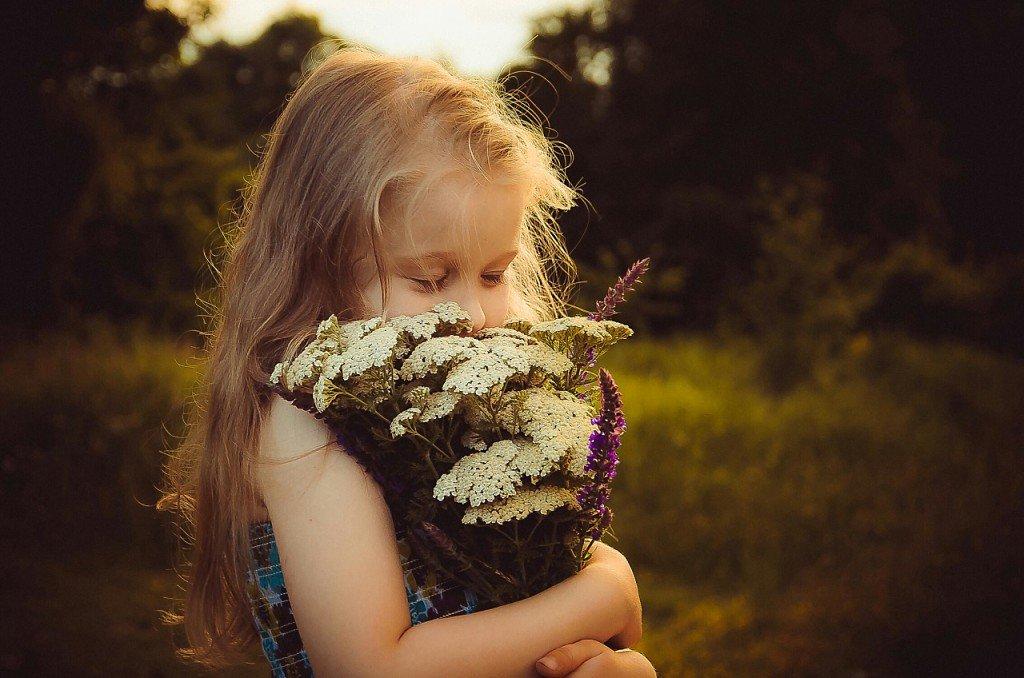 Здравствуй лето - Ирина Барс