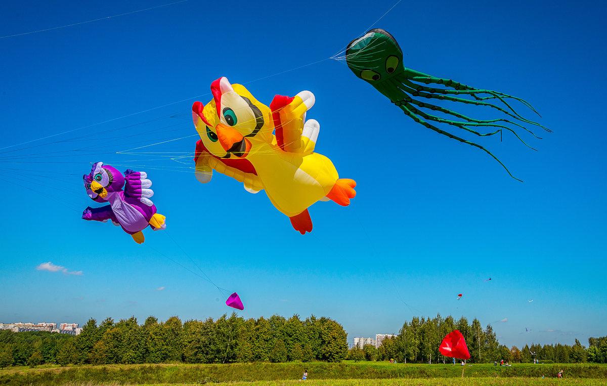 """Фестиваль воздушных змеев """"Пёстрое небо"""" - Борис Гольдберг"""