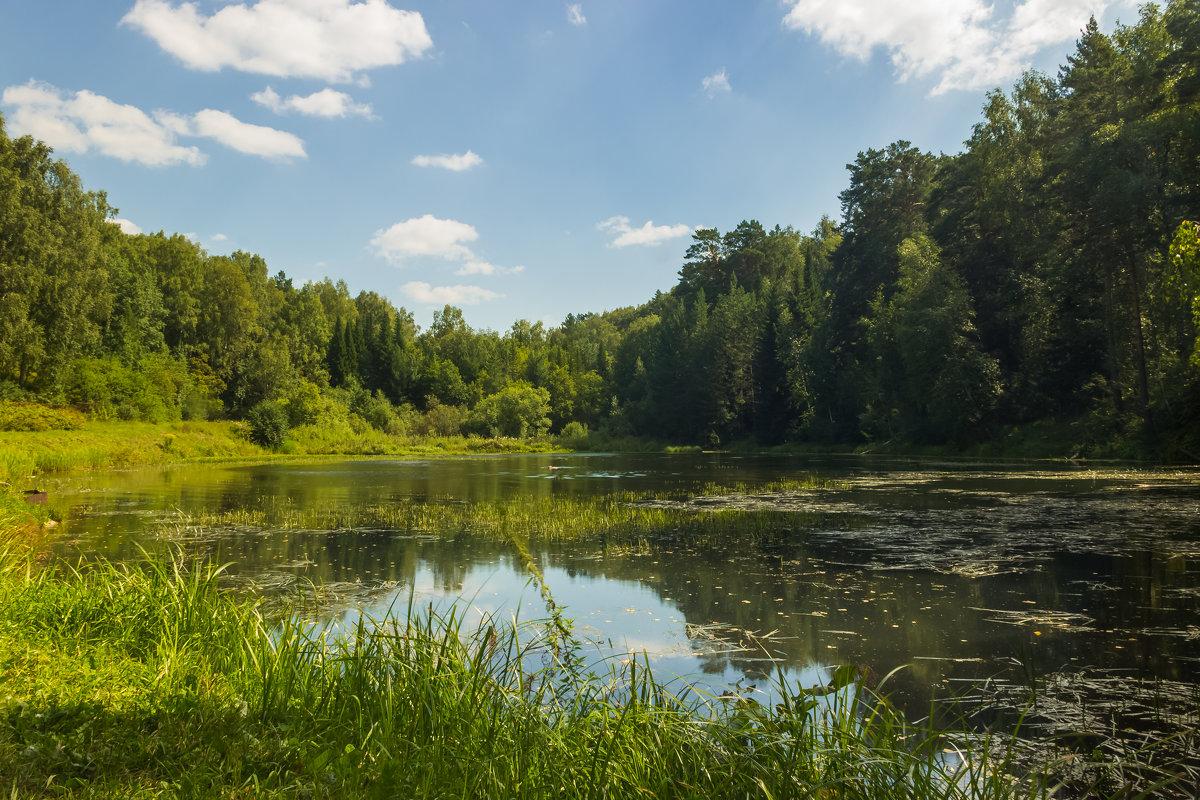 Озеро - Дима Пискунов