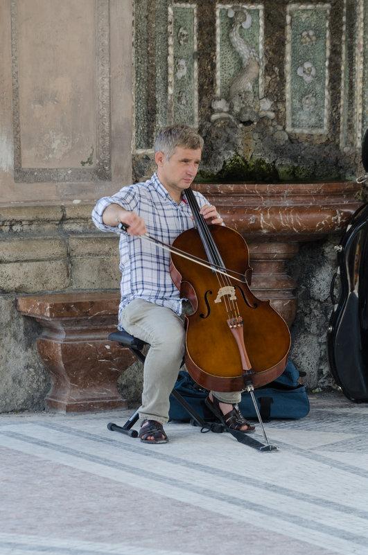 Музыкант - Eugen Pracht