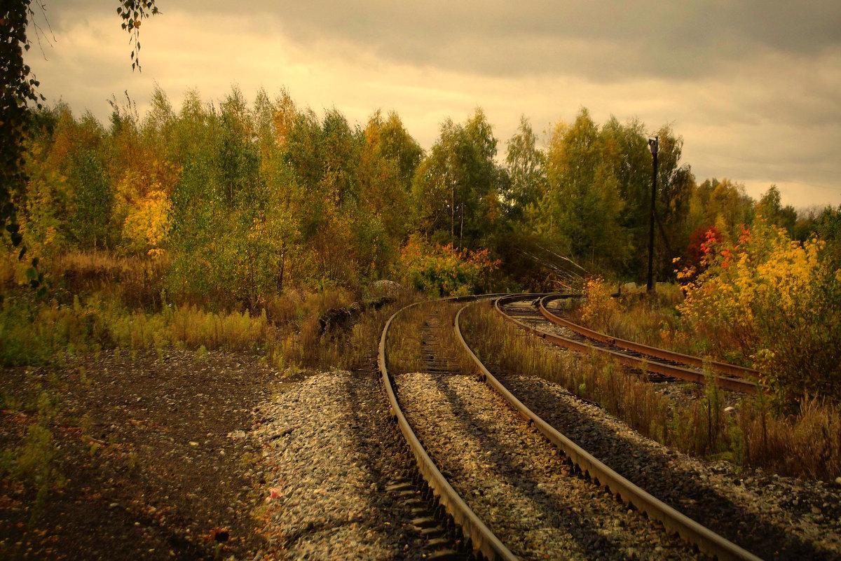 осень железной дороге - Сергей Кочнев