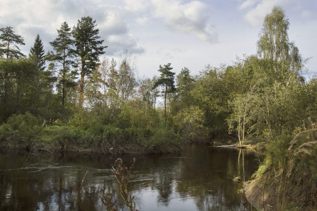 Лесная речка - Aнна Зарубина
