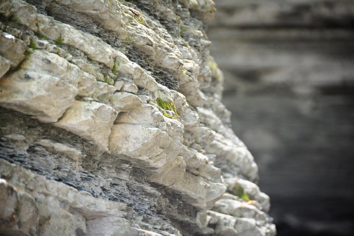 Камни - Александр