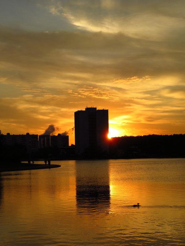 Тихий летний вечер на городском пруду - Андрей Лукьянов