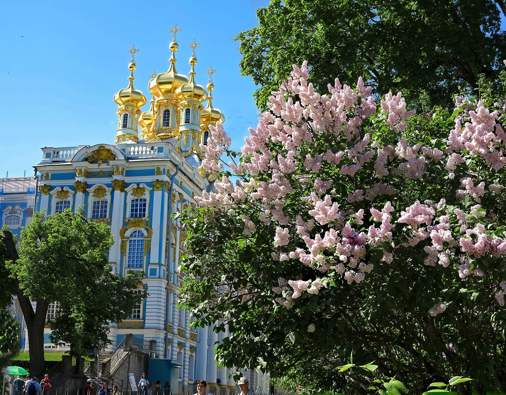 Екатерининский дворец. Весна - Наталья