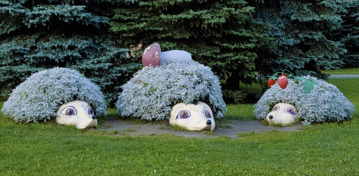 Мама, папа и сынок - Маргарита Кириллова