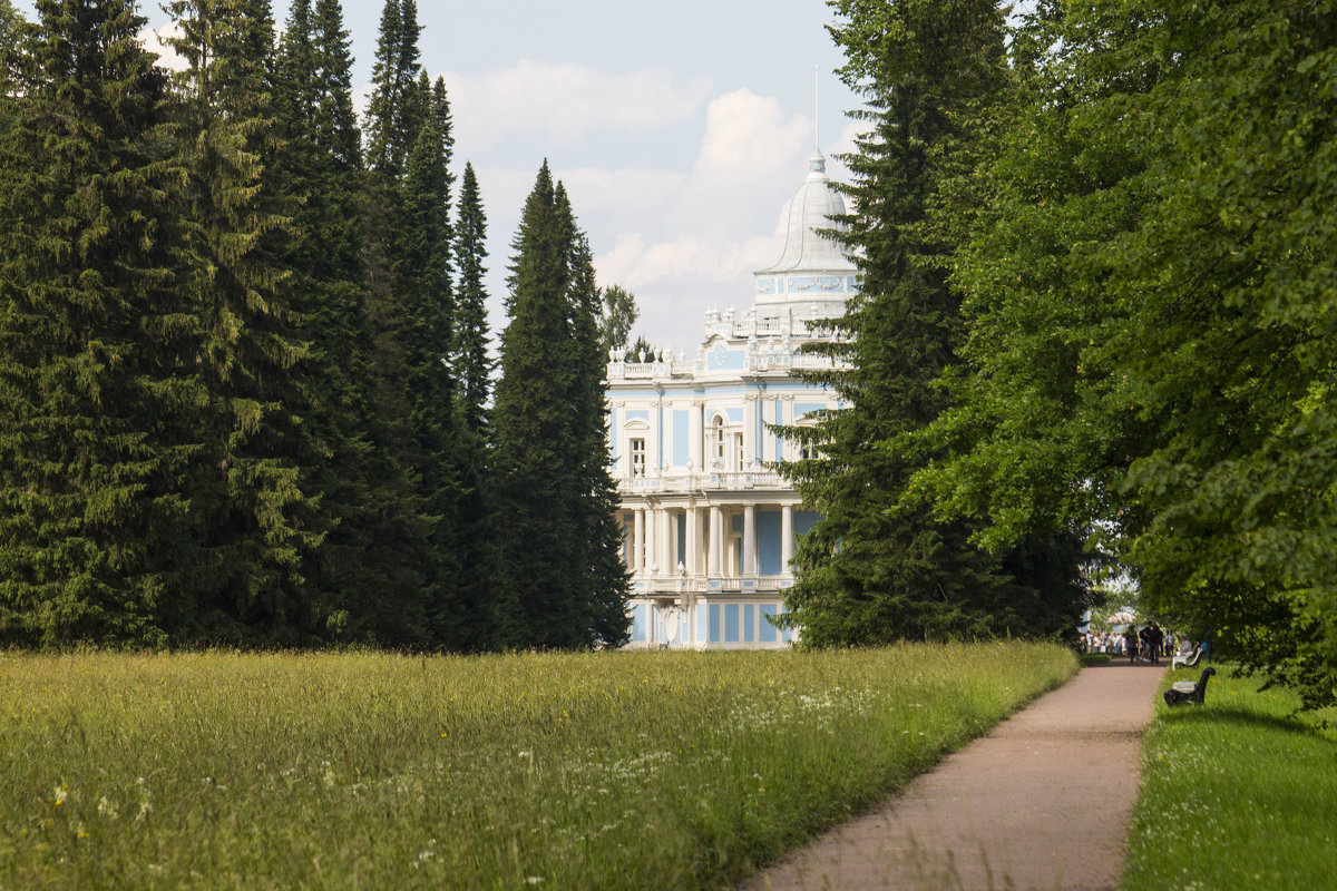 *** - Светлана Безрукова