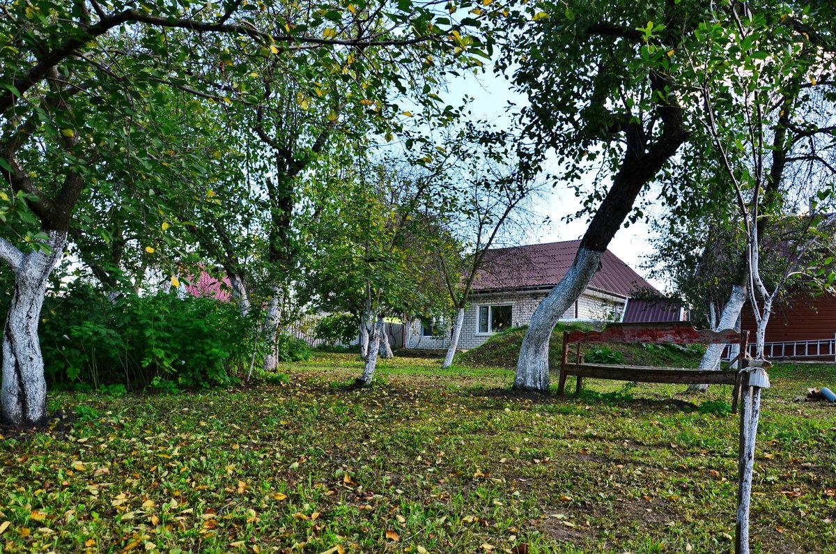 Старый сад - Леонид Железнов