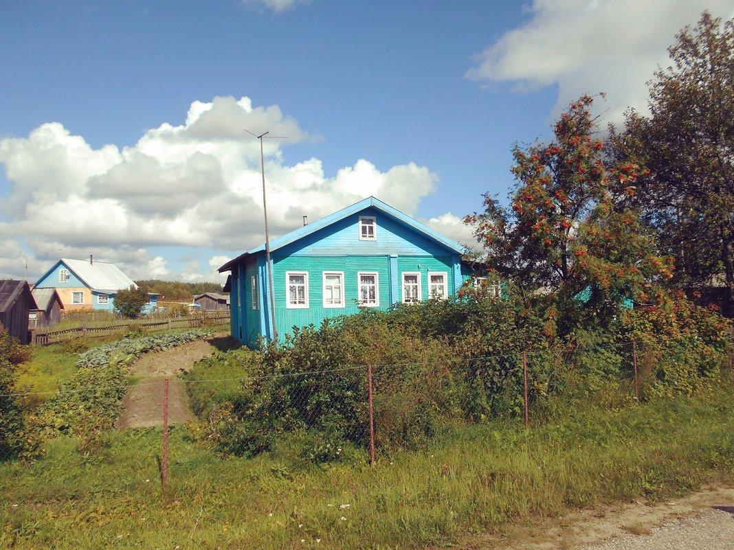 Лето в деревне Красная Гора - Николай Туркин