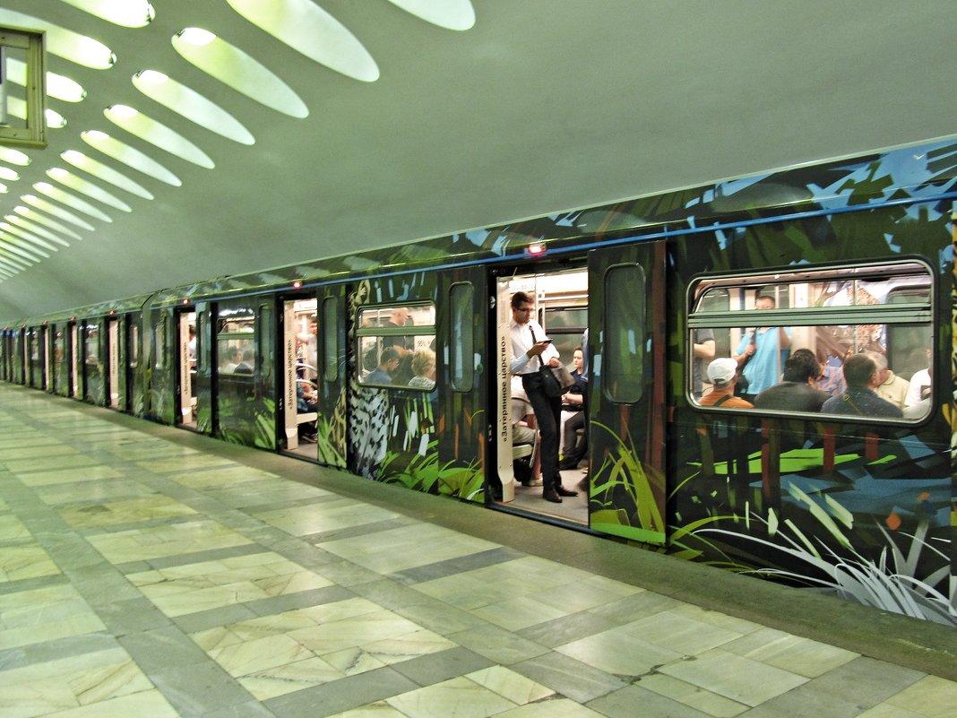Новый тигровый поезд в метро - Ирина Князева