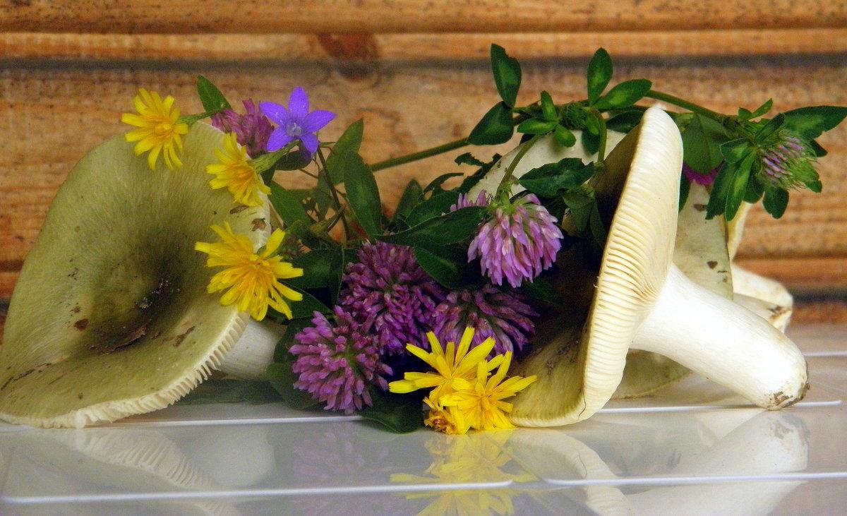 Сыроежки и полевые цветы... - Елена