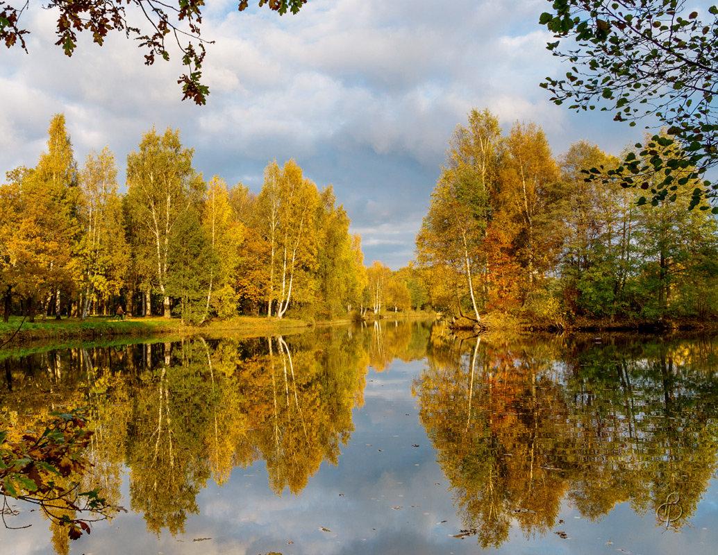 Краски осени - Виталий