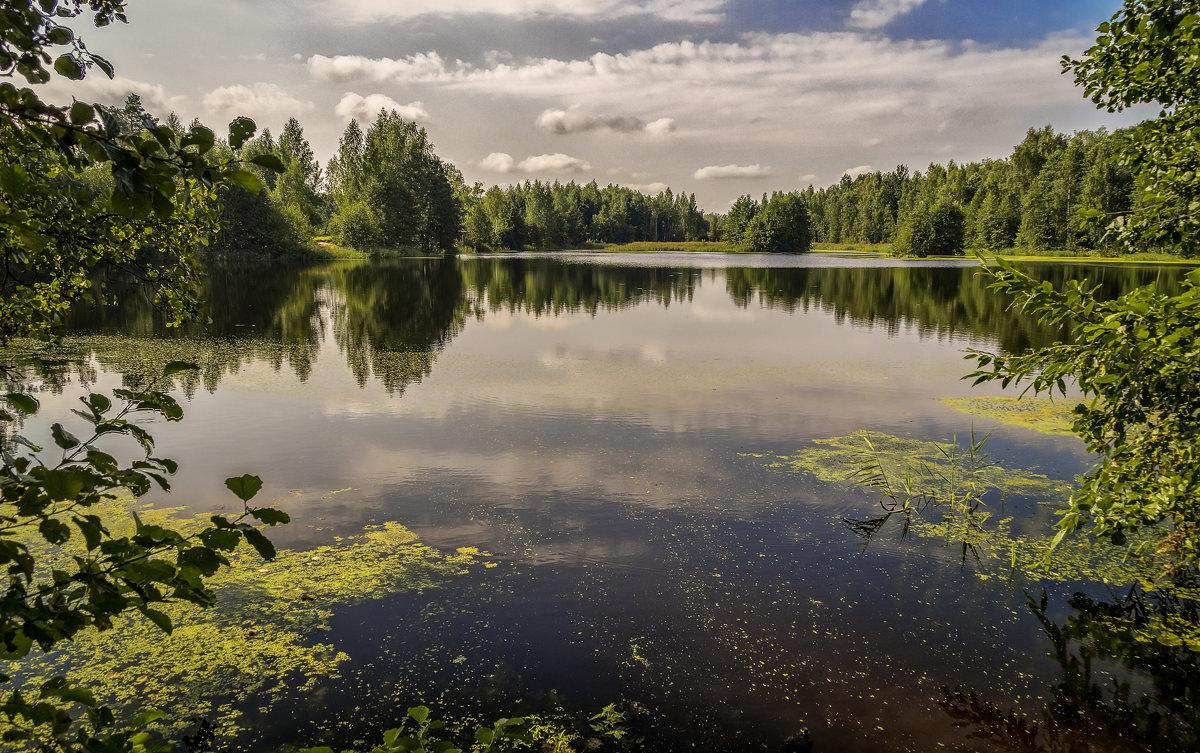Озеро - Андрей Дворников