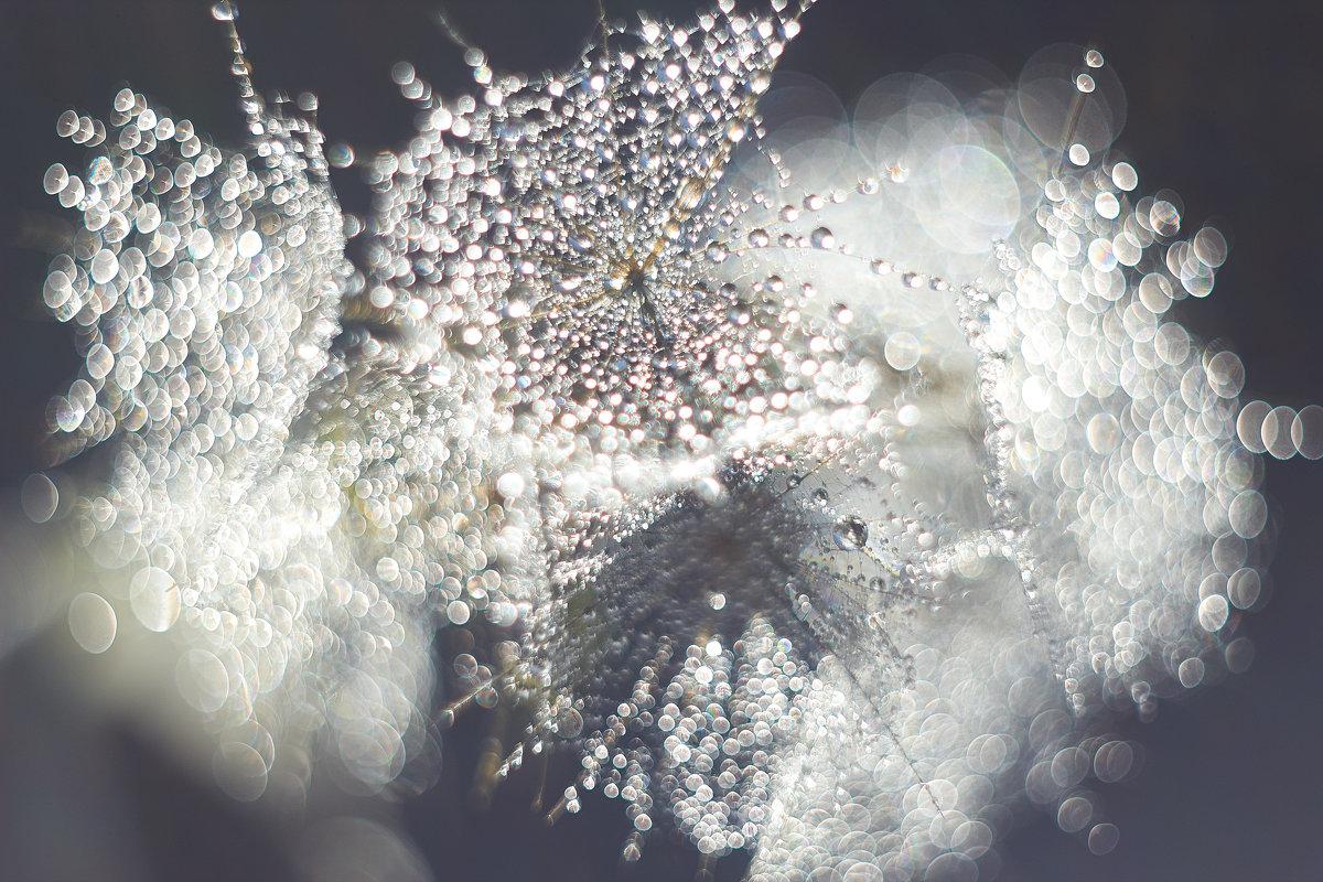 Солнечные брызги - Седа Ковтун
