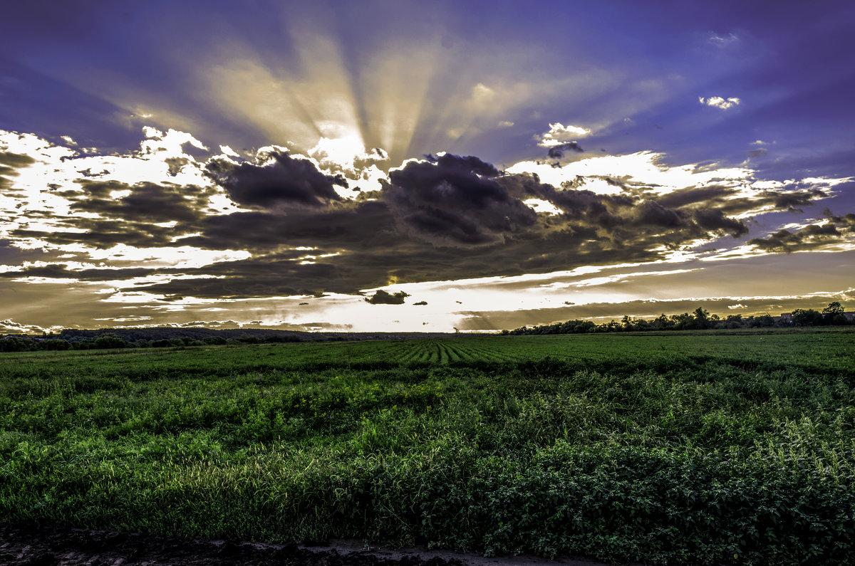 облака над полем - Константин Сафронов