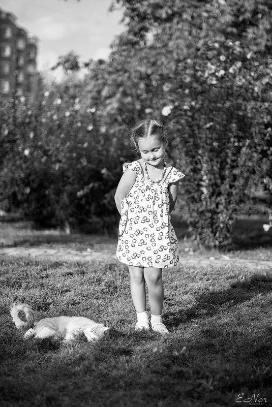 Девочка и кот - Елена Нор