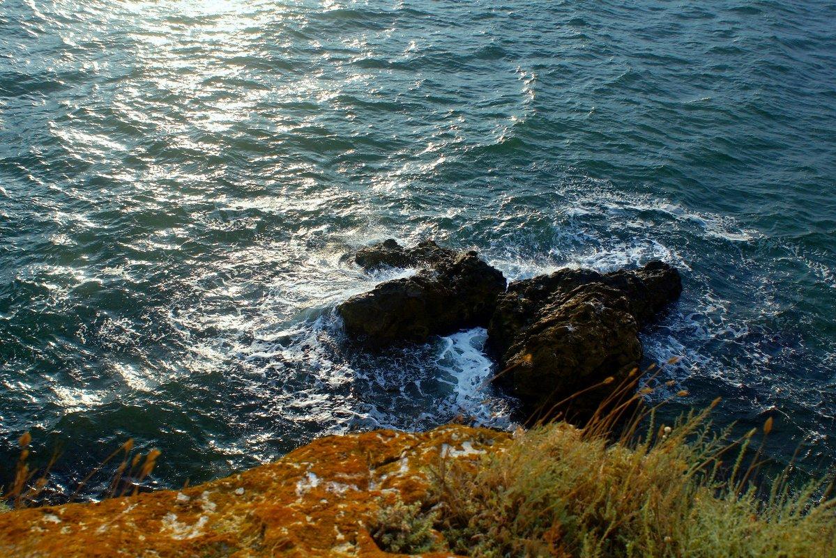 Воды Азовского моря. - владимир