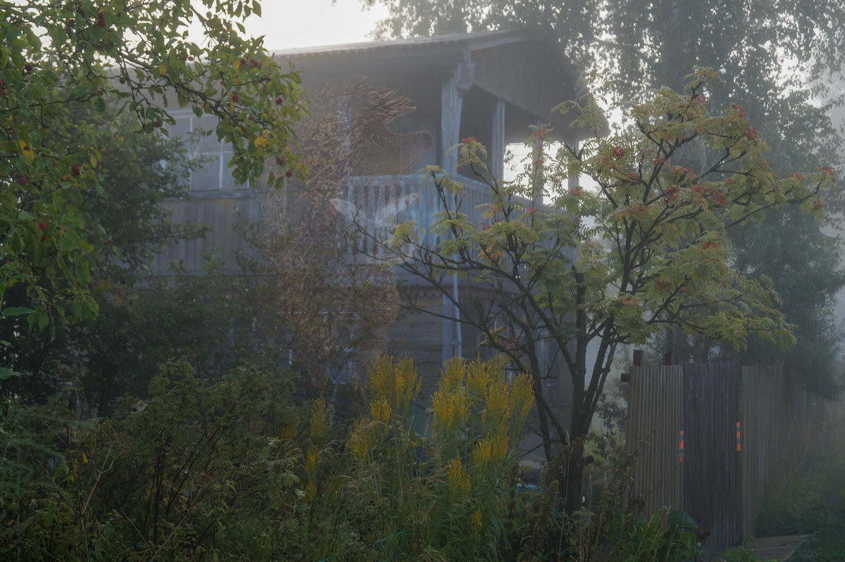 Туман - Владимир Пименков