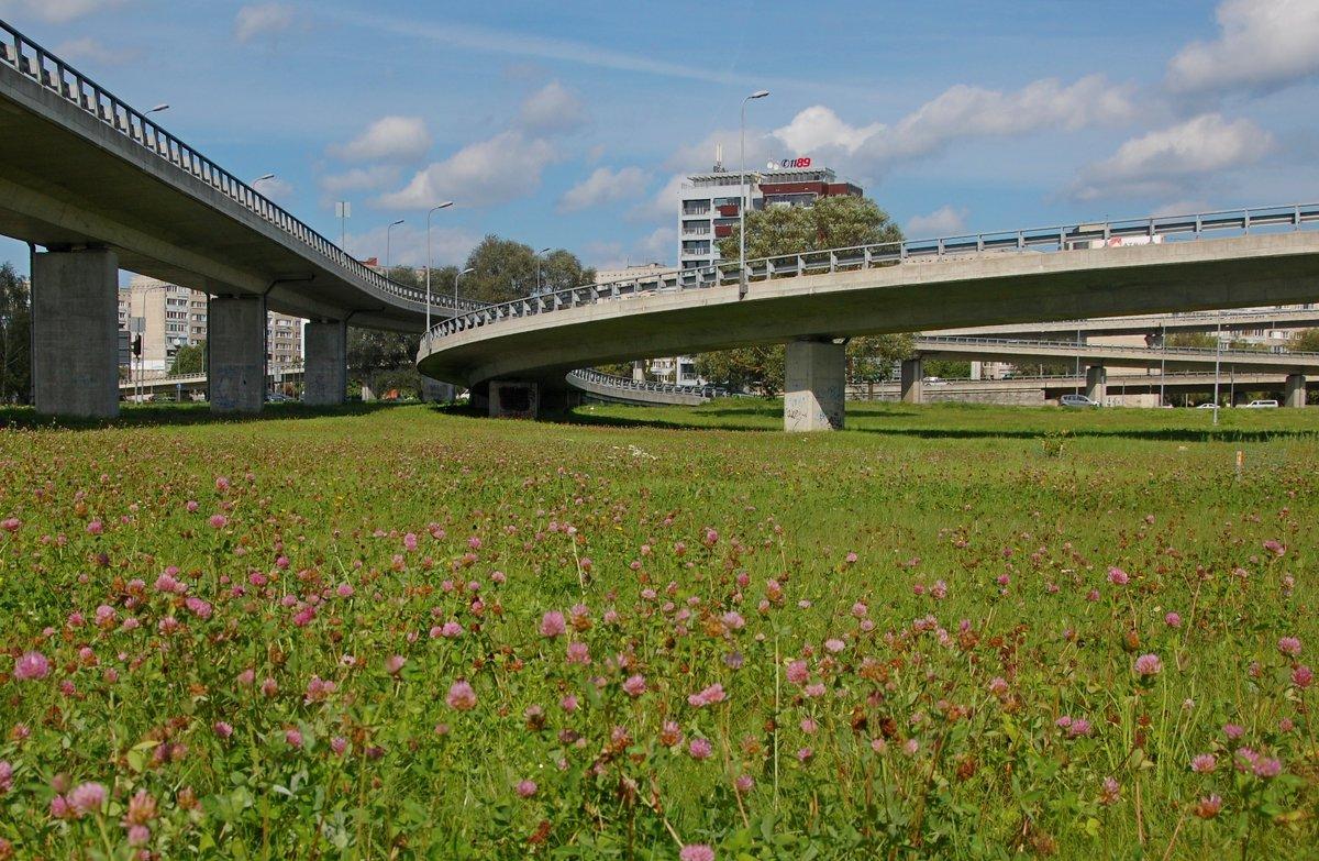 Южный мост в Риге - Teresa Valaine