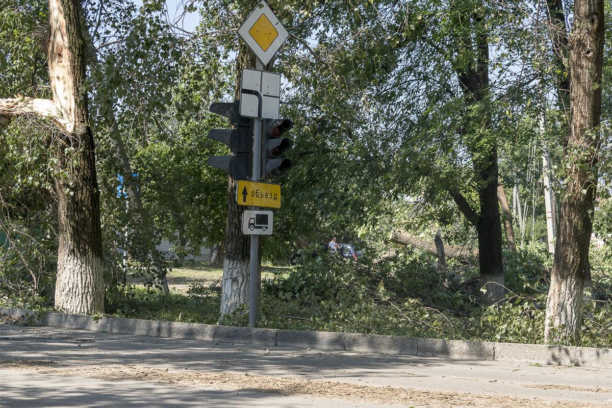 Последствия урагана - Игорь Сикорский