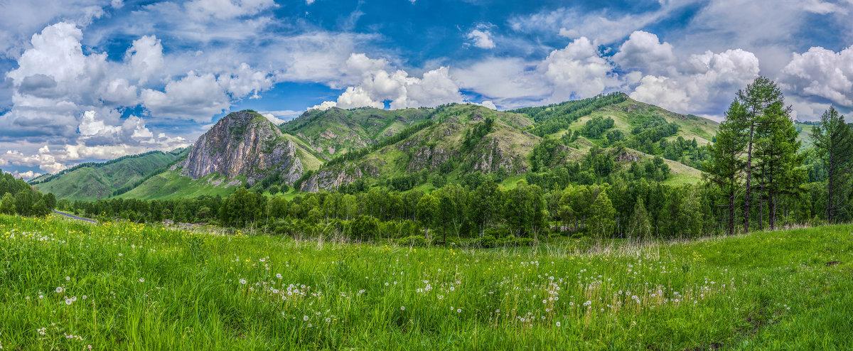 Облака и одуванчики - Sergey Oslopov