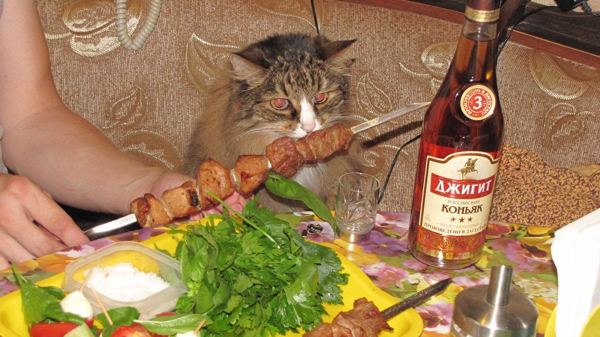 Ужин на двоих - Елена Безнасюк