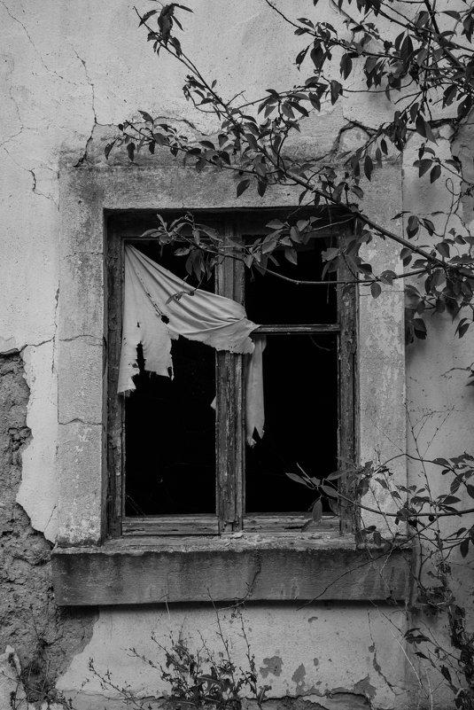 ** - Darina Pogodaeva