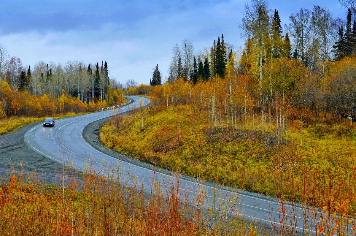 Поздняя осень в Сибири - Тарун Дас