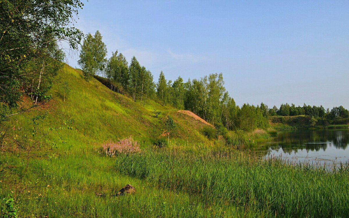 Картинки минувшего лета - Милешкин Владимир Алексеевич